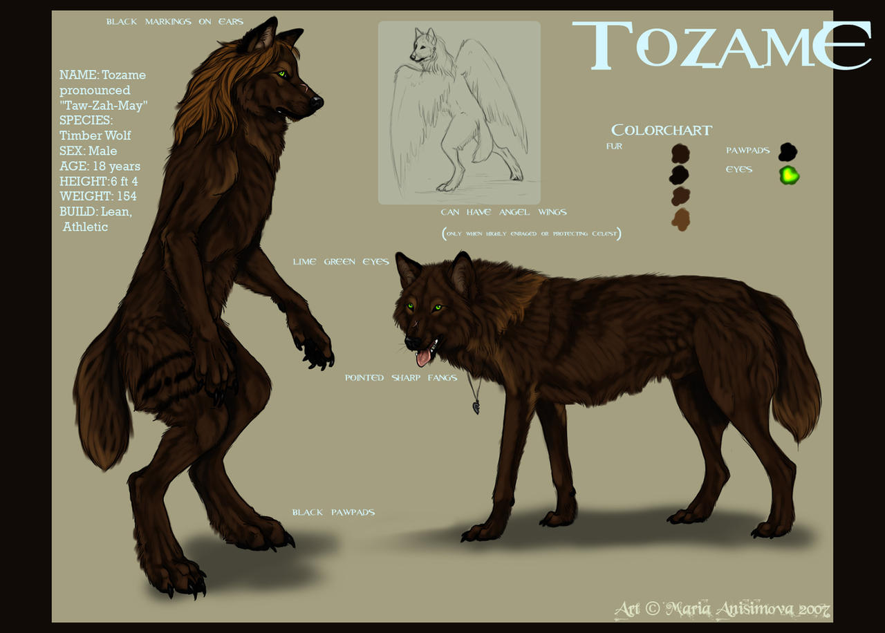 Tozame-refsheet commission by Yellow-eyes