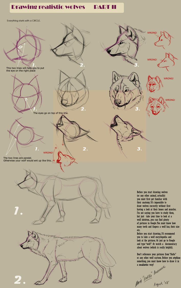 Drawing realistic wolves II by Yellow-eyes