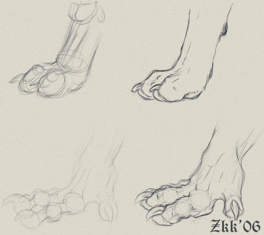 Paw and Hands by Yelloweyes Paws_n__hands_by_Yellow_eyes