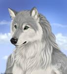 Gaelicwolf
