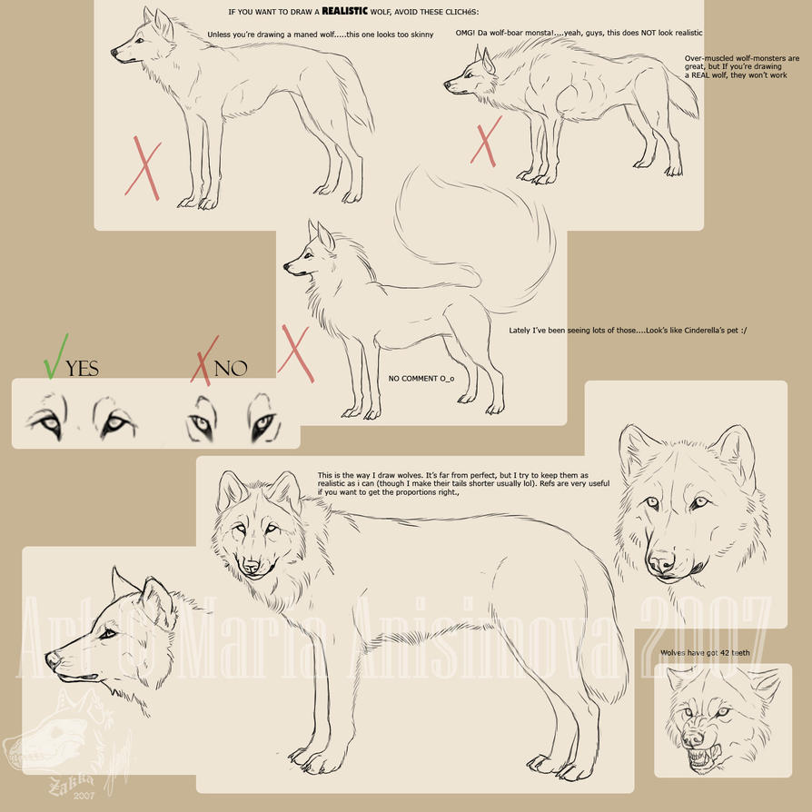 Drawing Realistic Wolves By Yelloweyes