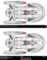 Ships of ASR-UFP-EUROPA-MERCY