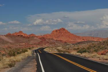 Desert Road by ConvertedCanvas