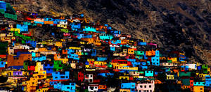 What a Colorful Lima