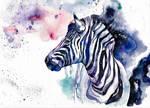 zebra, watercolor