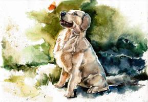 Dog, watercolor by LomovtsevaOlga