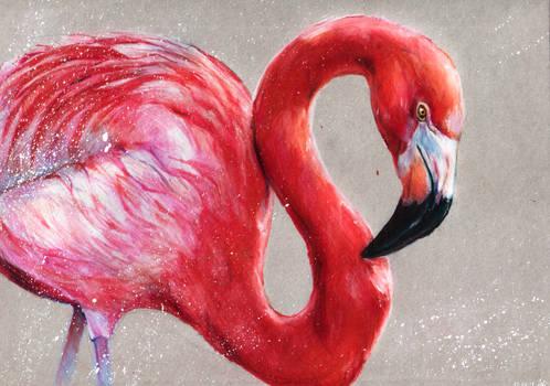 Flamingo, colored pencils