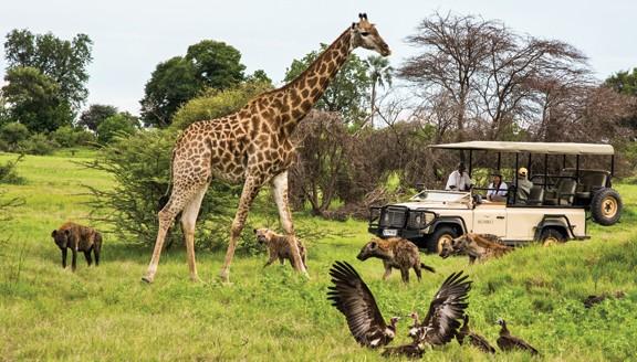 Kết quả hình ảnh cho Công viên quốc gia Kruger