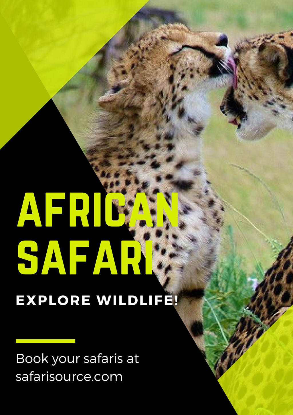 African Safari Tours and Packages