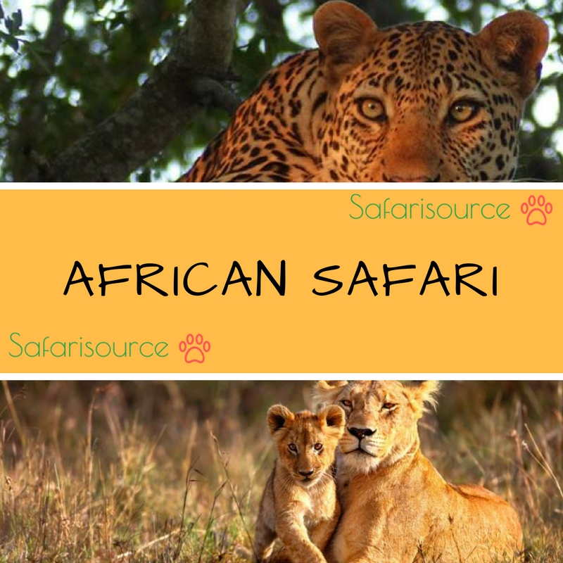 Going on an Adventurous trip to Africa?