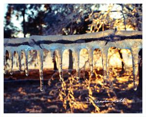 Frozen Wire