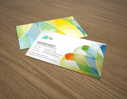 Arena hoop business card by Lemongraphic
