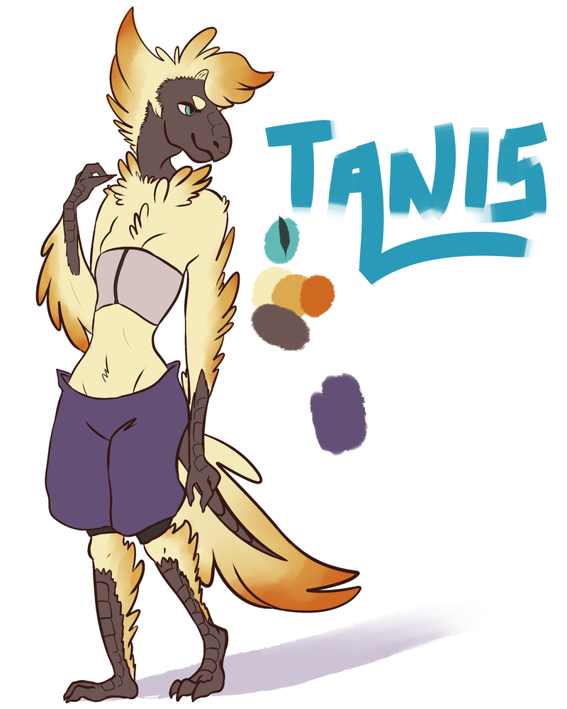 Tanis by KaoKay