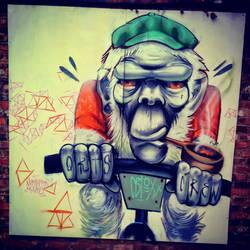 cycle monkey