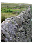 Dry Stone Wall on the moors