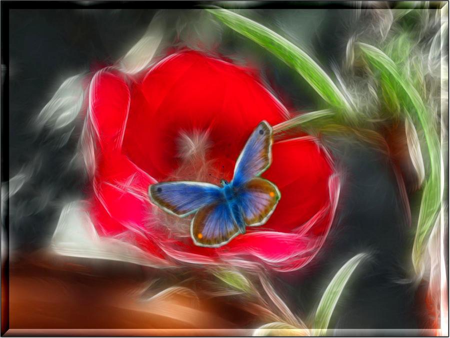 Za poeziju - Page 6 Flwr_1543_1_by_placi1-d5filfz