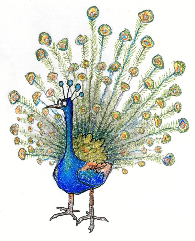Peacock doodle by GaffaMondo