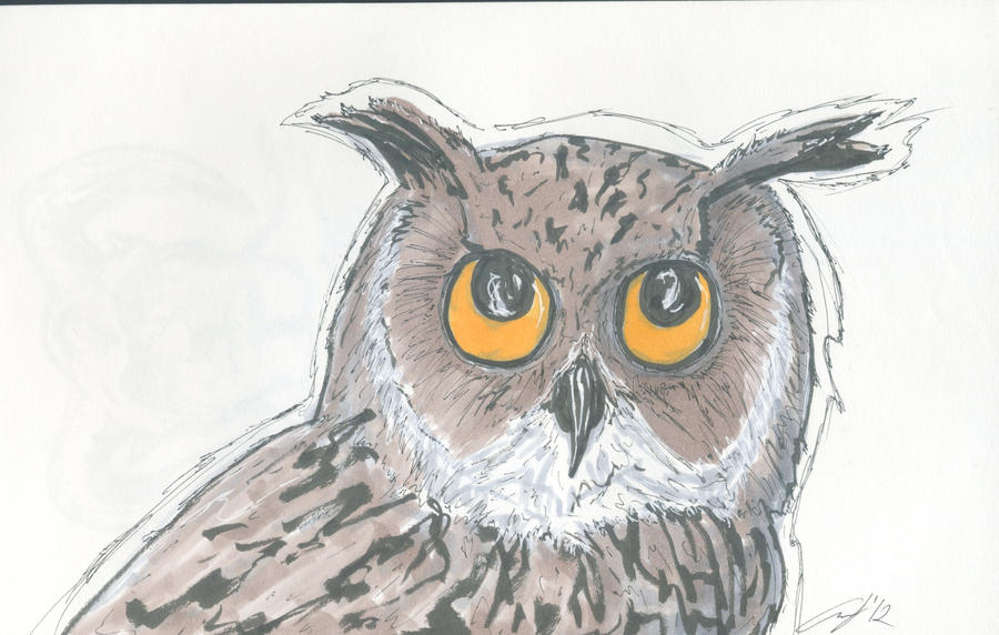 Owl Sketch by SweetMonkeyStudios