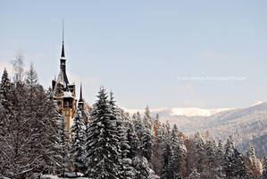 Peles Castle by Simina31