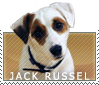 Jack Russel Stamp by MachatiStamps