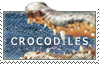 Love Crocodiles by MachatiStamps