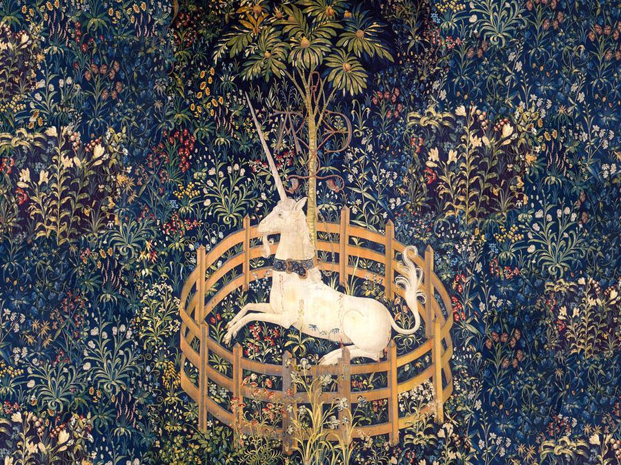 Unicorns - Magazine cover