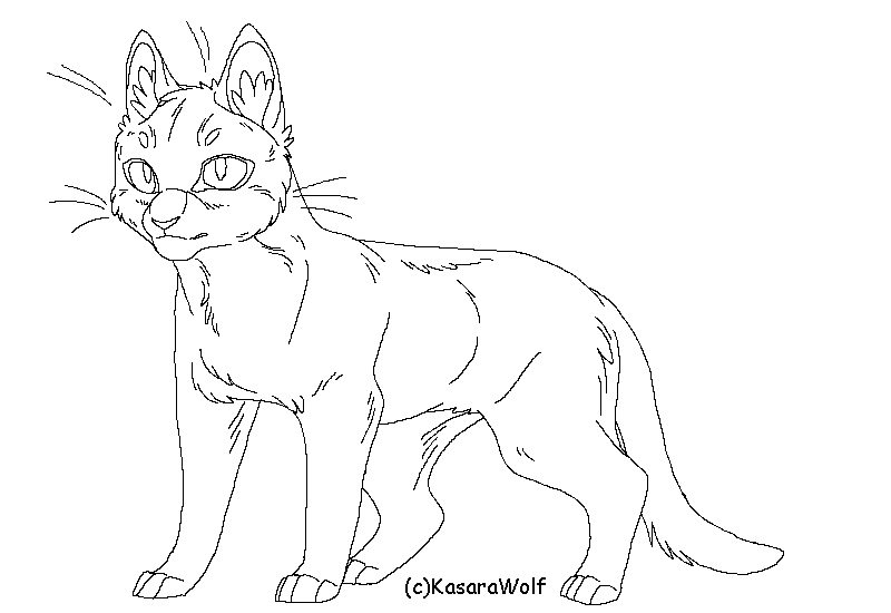 The Gallery For --u0026gt; Warrior Cat Lineart Kasarawolf