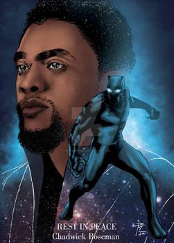 Chadwick Boseman_Pantera Negra_Black Panther.