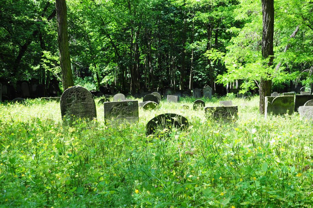 Poland: Jewish Cemetery i by Kai-Tea