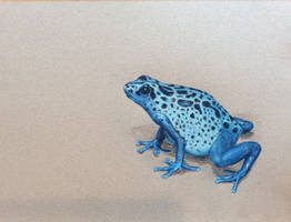 Frog by mommypaints