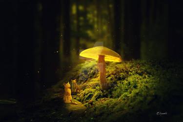 The luminous mushroom by Elysekh