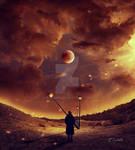 The field of lanterns