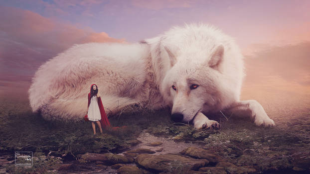 My faithful white wolf