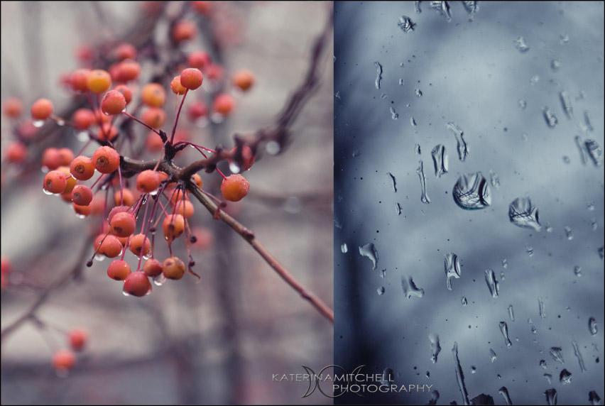 Rainy Days Are Extra Gray - 2