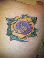 Becca's rose revisited by ArtworkbyMatWard