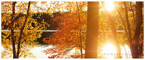 Autumn at Little Bearskin Lake by Raymaker