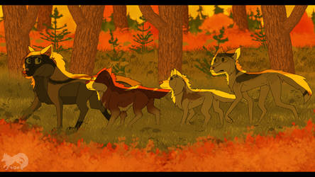 WoLF: Follow the Leader