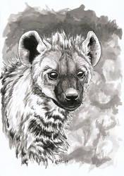 Inktober Day 15 Hyena by Wuhven
