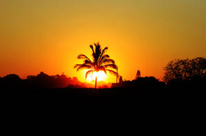 Summer sunset by Jrandvell