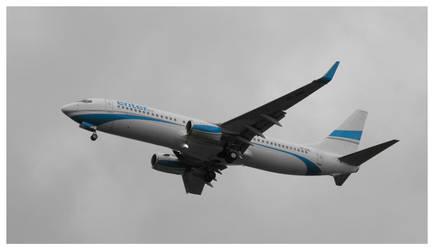 Boeing 737-800 by WormWoodTheStar