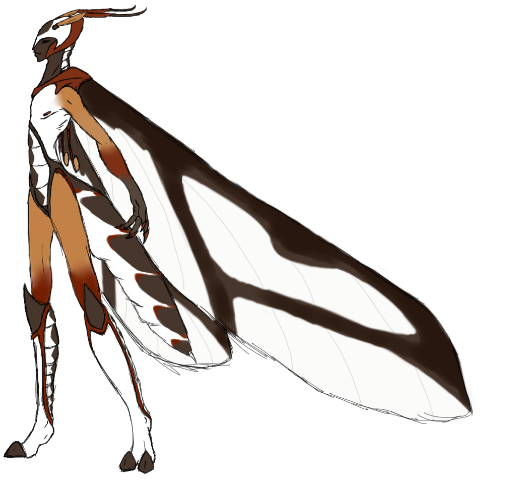 Kittariku's world Ulidae_the_Crane_Fly_by_KittaRiku
