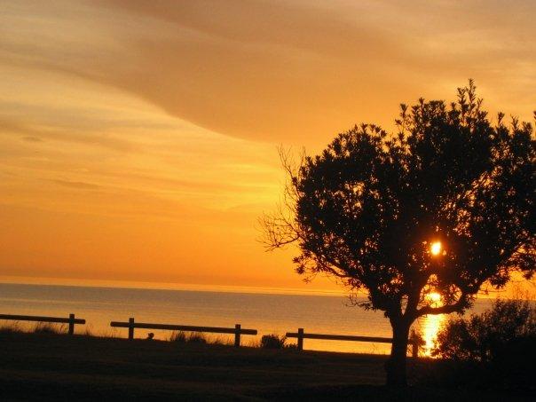 Sunset through tree by Kookaburragirl