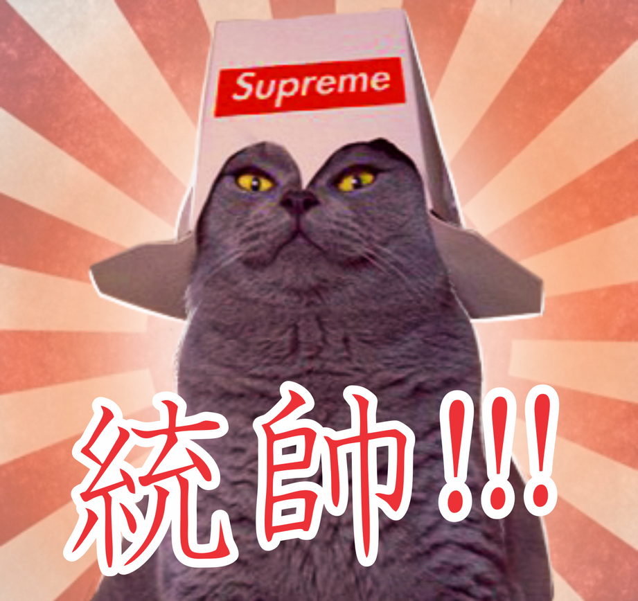 Supreme Command Kitty by F0st3rArt