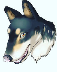 Request smoothcollie_balty on ig by Yami-Yoru