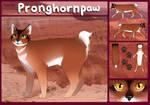 Pronghornpaw