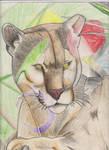 Mountain lion for art class