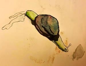 Snail Drifting