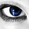 Ravenclaw 3 by DistressedDove