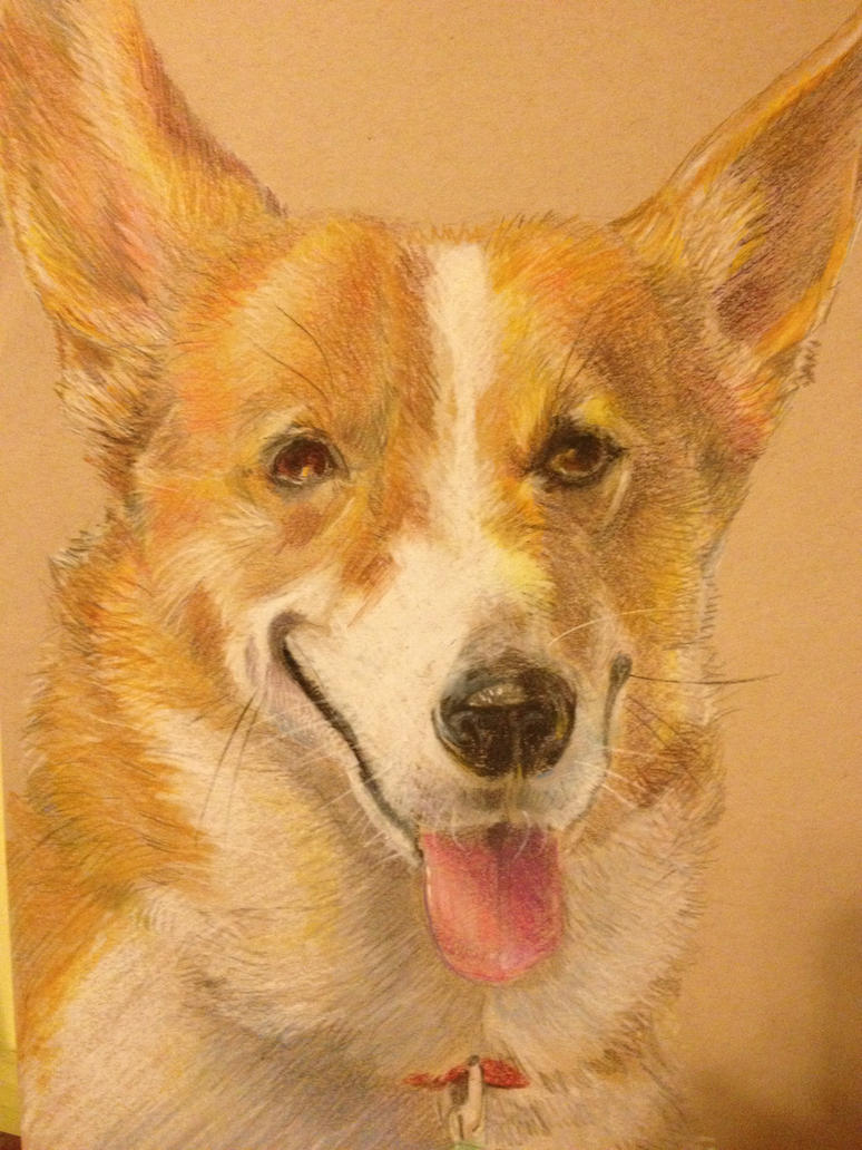 Pet Portrait: Ein by The-Z