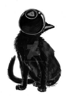 Inktober -- 8ball cat, No.